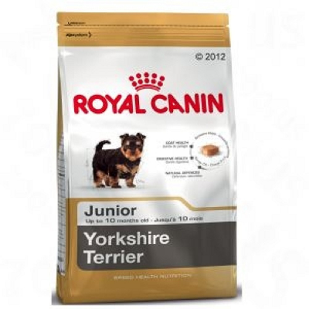 RC  1,5kg mini Junior yorkshire dog