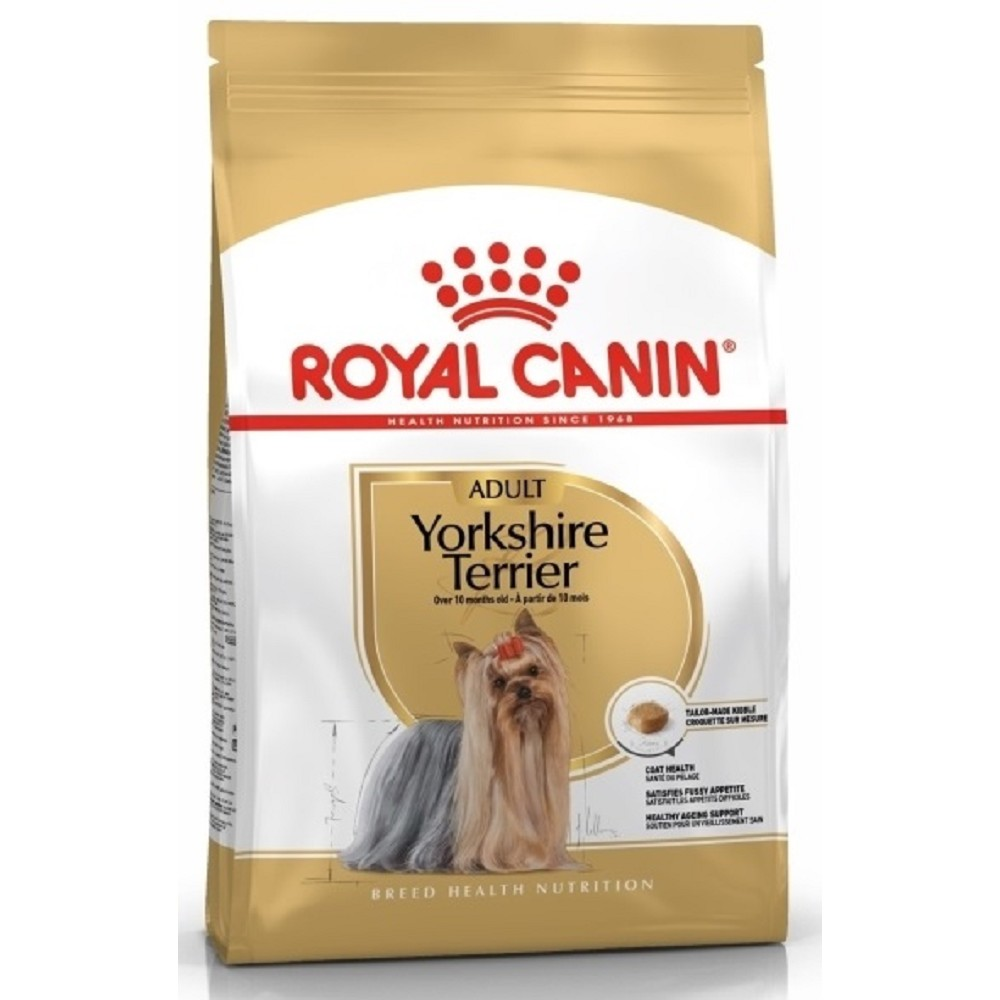 RC mini Adult yorkshire 1,5kg