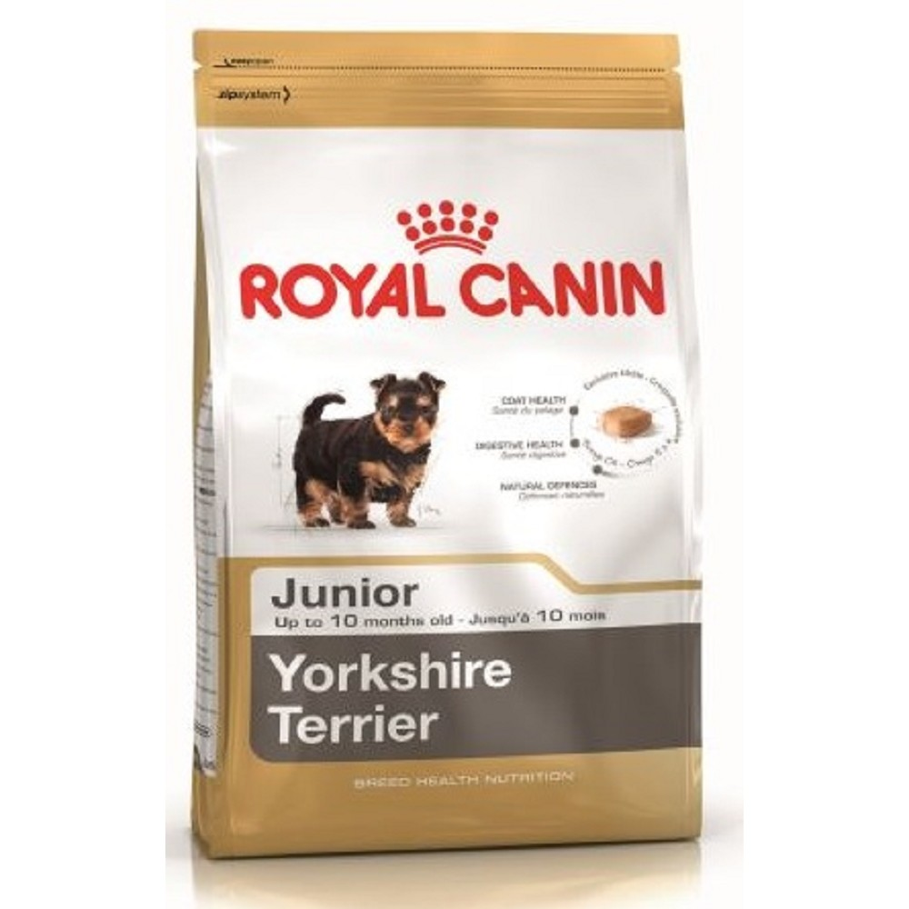 RC  0,5kg mini Junior yorkshire dog