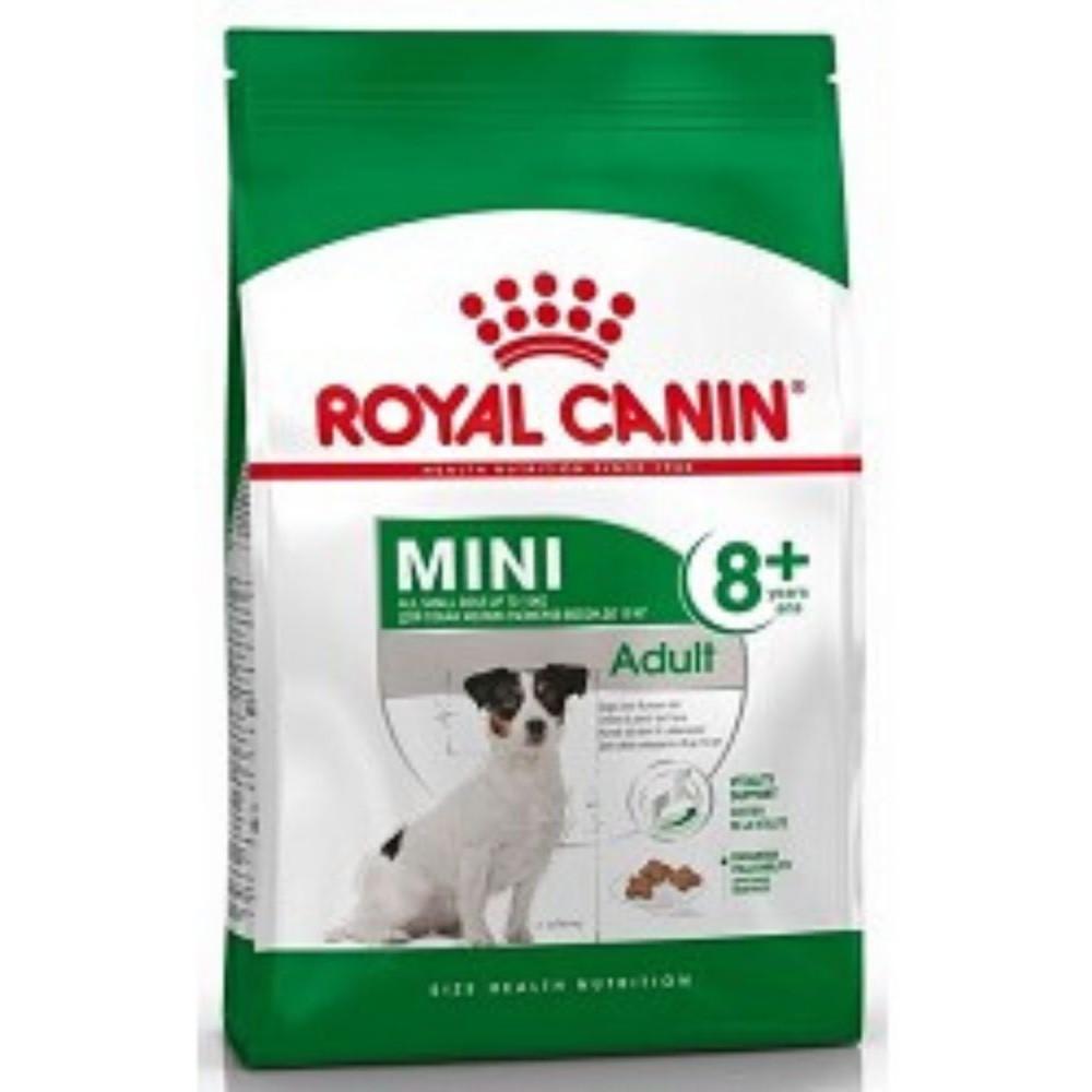 RC mini Adult 8+  0,8kg