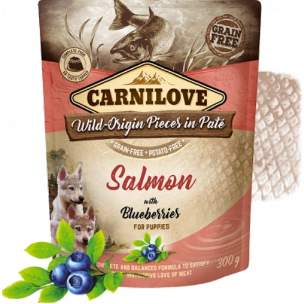 Carnilove Dog Pouch Paté Salmon with Blueberries for Puppies 300 g