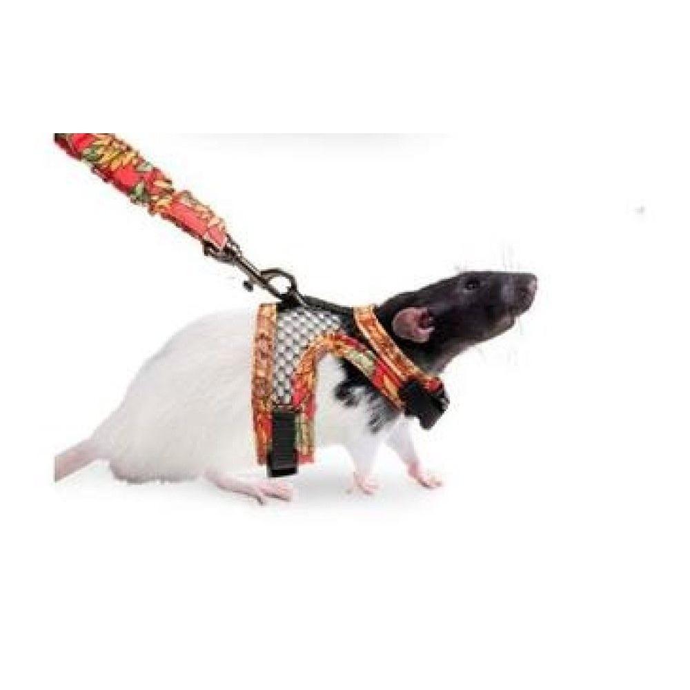 Postroj s vodítkem pro potkana  S