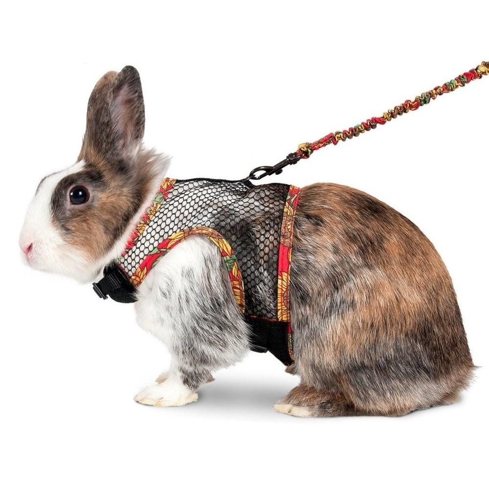 Postroj s vodítkem pro králíka L
