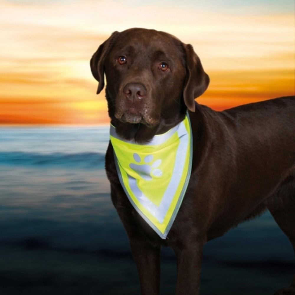 Šátek reflexní pro psa   S - M