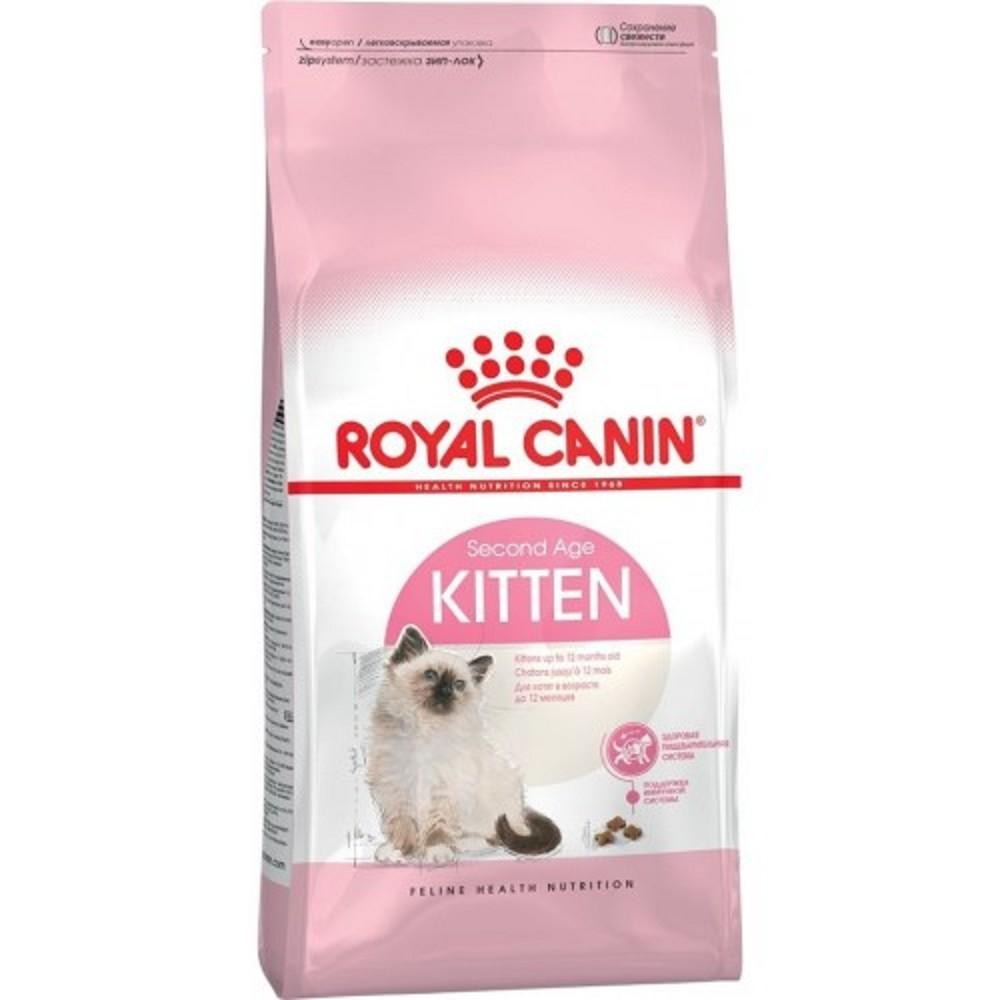 RC Kitten 10kg