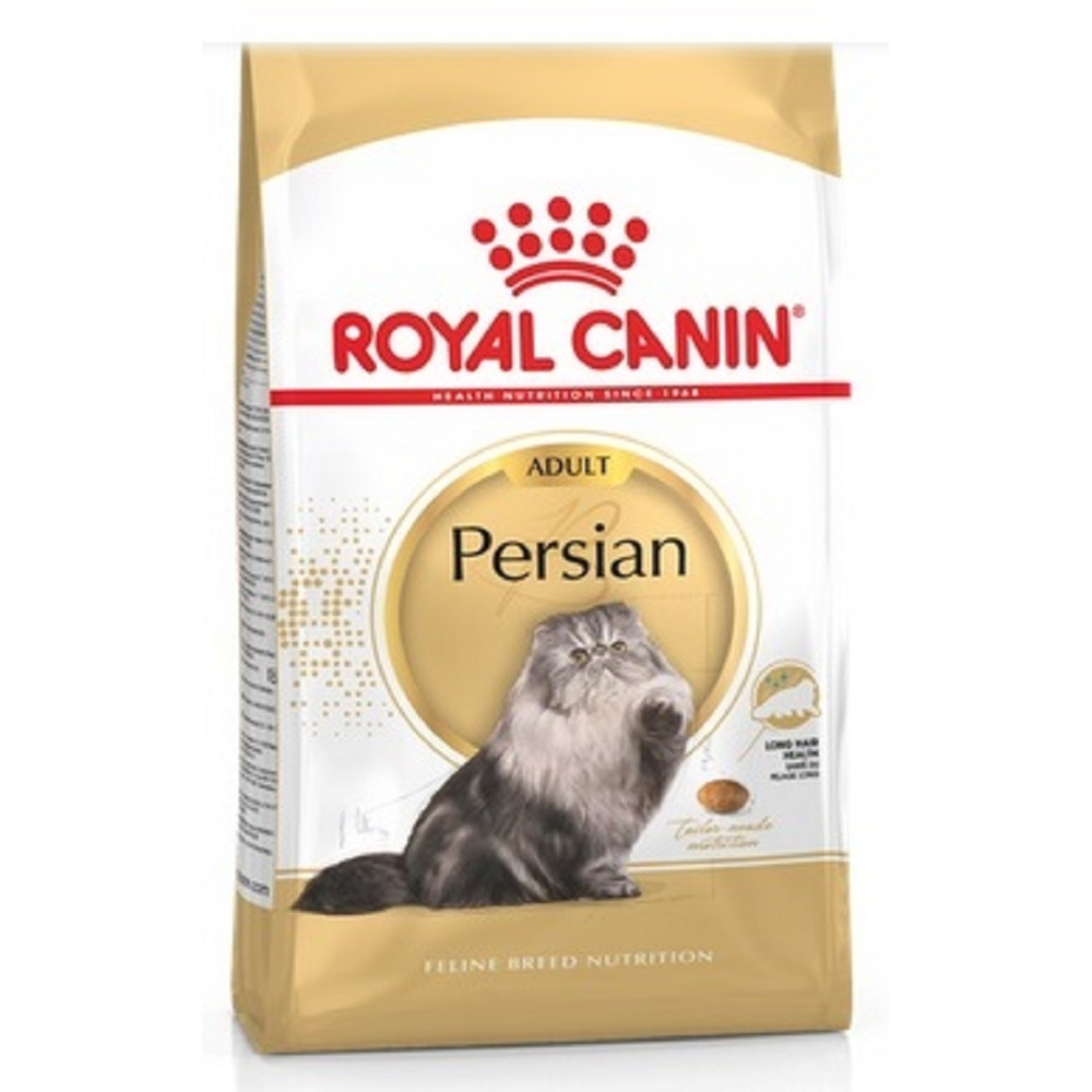 RC Persian cat 10kg