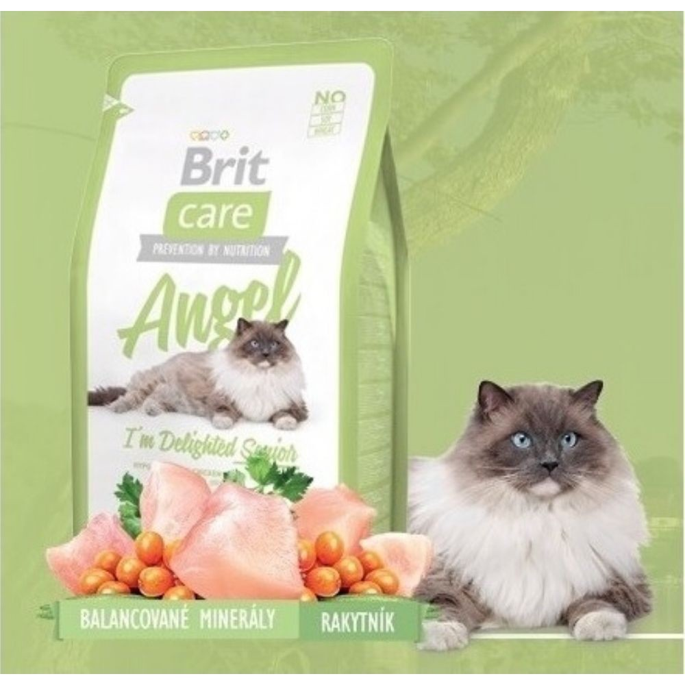 Brit care angel senior kuřecí s rýží 400g