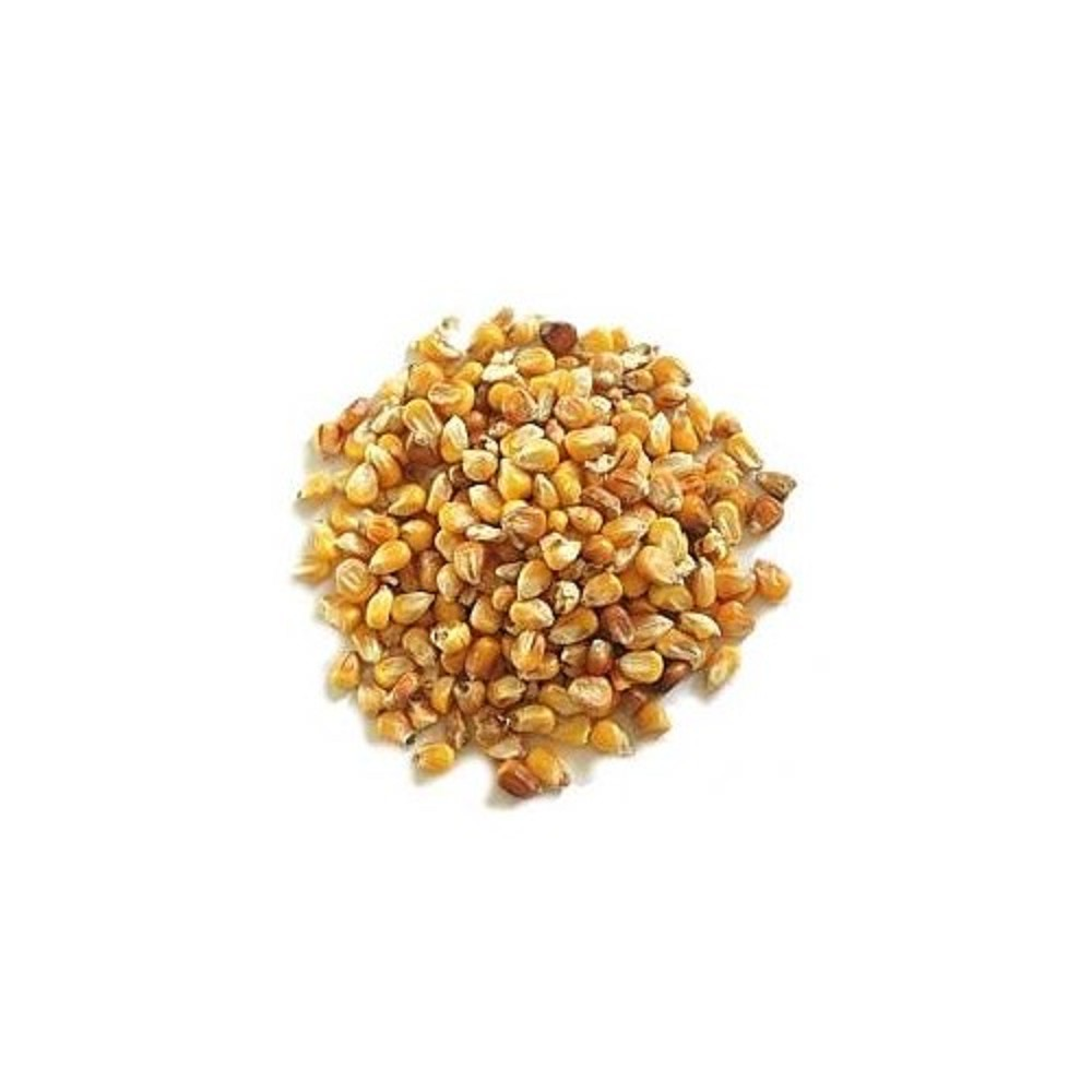 Kukuřice 800g