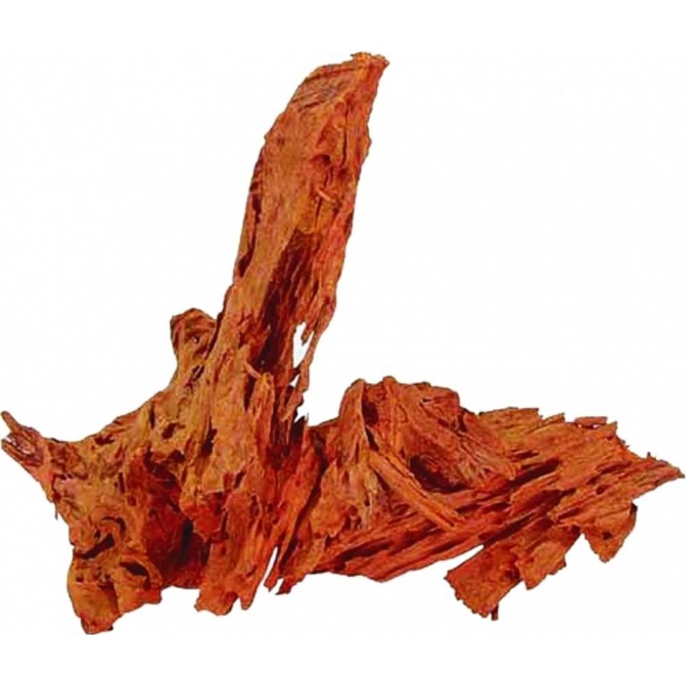 Kořen Jati 25-35cm
