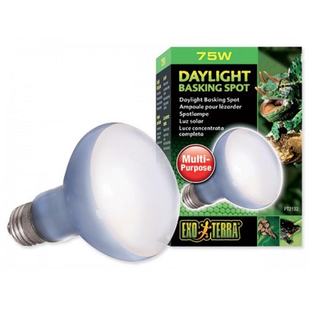 Žárovka Daylight Basking Spot 75W