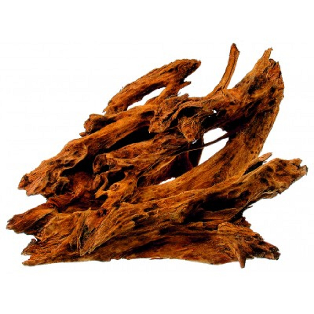 Kořen Mangrowe 35-45cm