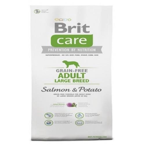BRIT CARE 1,0KG ADULT GRAIN-FREE LB SALMON+POTATO