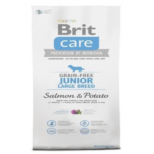 BRIT CARE 1,0KG GRAIN-FREE JUNIOR LB SALMON+POTATO