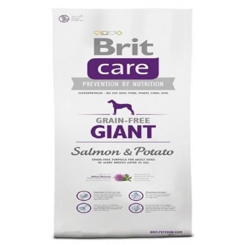 BRIT CARE 1,0KG GRAIN-FREE GIANT SALMON POTATO